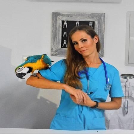 Dr. Elena Nikolaeva(veterinarian)