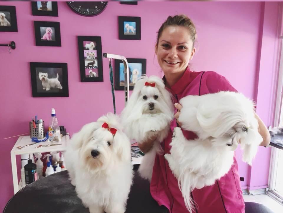 Martina Sujova (Groomer/manager of Dog spa)